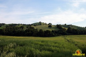 Agriturismo Serratone Guesthouse Tuscany Italy View 12
