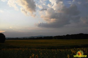Agriturismo Serratone Guesthouse Tuscany Italy View 21