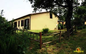 Agriturismo Serratone Guesthouse Tuscany Italy View 25