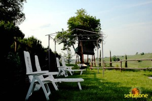 Agriturismo Serratone Guesthouse Tuscany Italy View 35