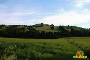 Agriturismo Serratone Guesthouse Tuscany Italy View 37