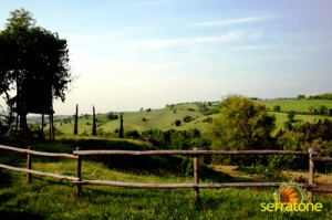 Agriturismo Serratone Guesthouse Tuscany Italy View 40