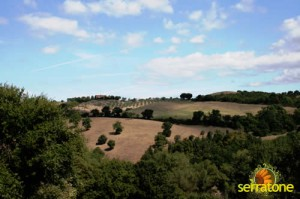 Agriturismo Serratone Guesthouse Tuscany Italy View 45